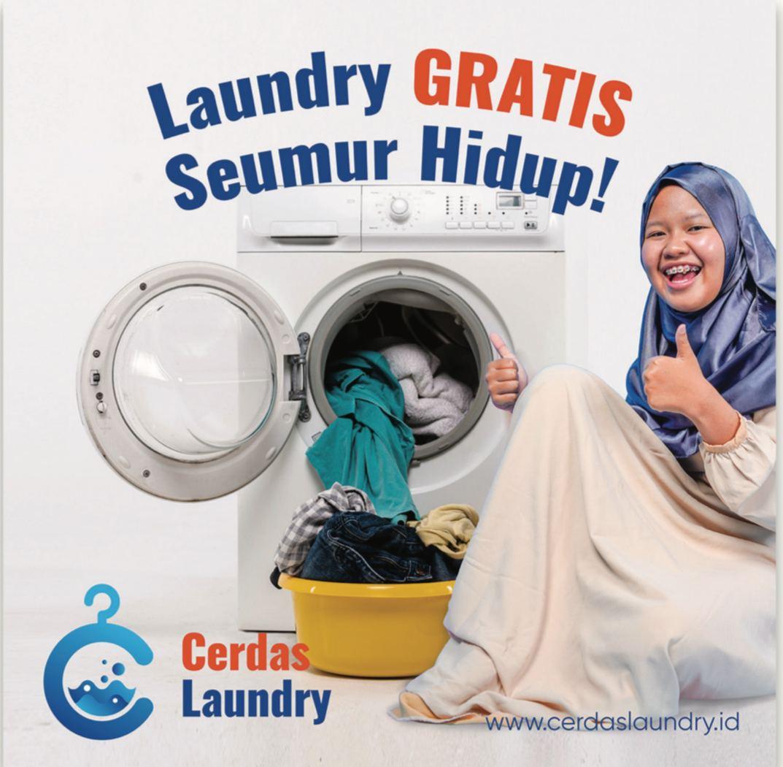 peluang bisnis cerdas laundry